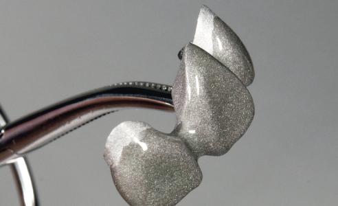 Fig. 2: PRE OPAQUE trasparente e fluido incrementa l'affidabilità del legame con la struttura metallica e consente uno strato omogeneo di opaco.