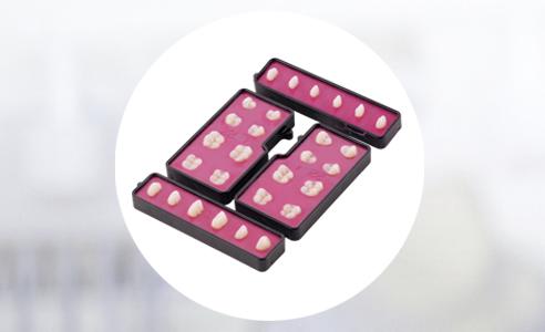 Fig. 2: Solución de marco dental VITA VIONIC FRAME con dientes protésicos VITA integrados en cera en posición estable.